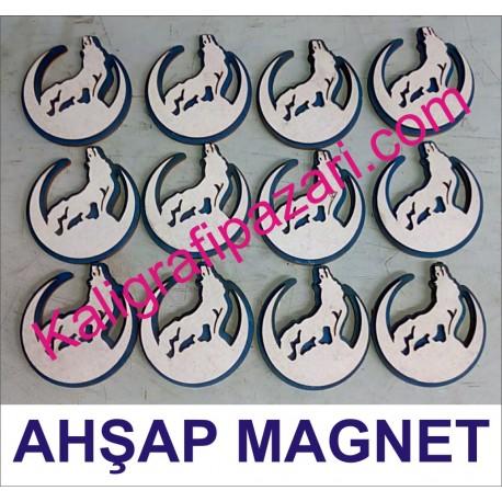 bozkurt magnet 12 li paket
